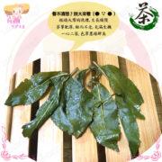 H002004大禹嶺特級高山茶15