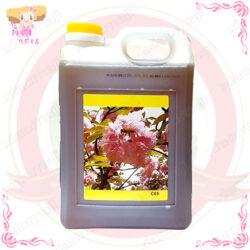 C002013蜂蜜調味糖漿