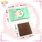 A009071520巧莎巧克力2